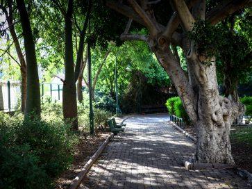 פארקים וגנים